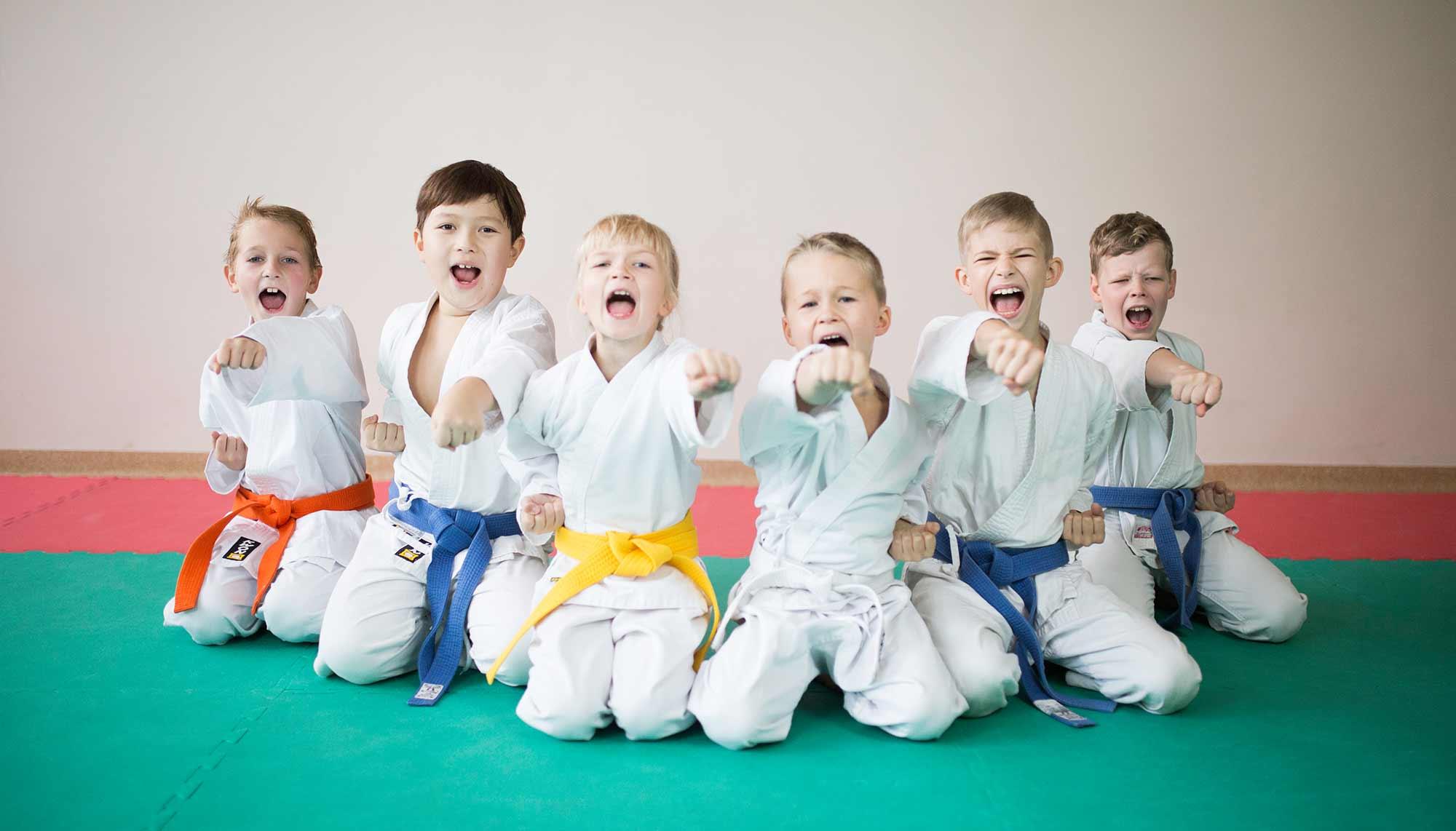 Karate vaikai